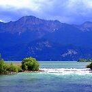 Leaving the Lake by Daidalos