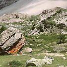 Rock - a - feller  by areyarey