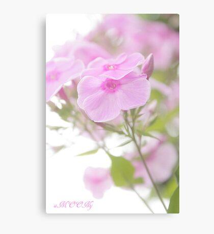 Pink Heaven Canvas Print