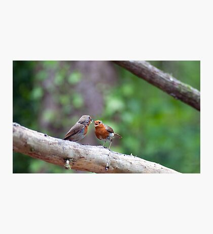 Catch or go hungry - Cheers mum Photographic Print