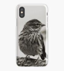 Oiseaux iPhone Case/Skin