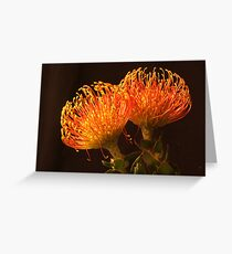 Intense Color Greeting Card