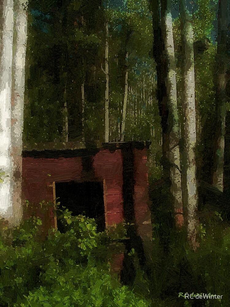 Shanty in the Shadows by RC deWinter