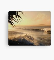 Sunset at Main Beach Canvas Print