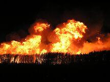 Fiery Night II by Tanya Rossi
