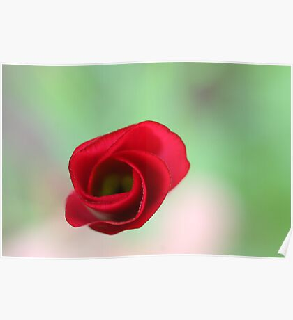 The end of a great artwork - red whirlwind in a green paradise Poster