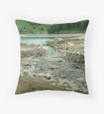 Underwater Waterway Throw Pillow