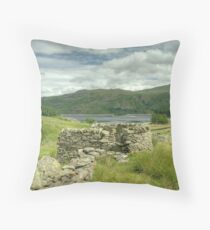 Eagle Lookout Throw Pillow
