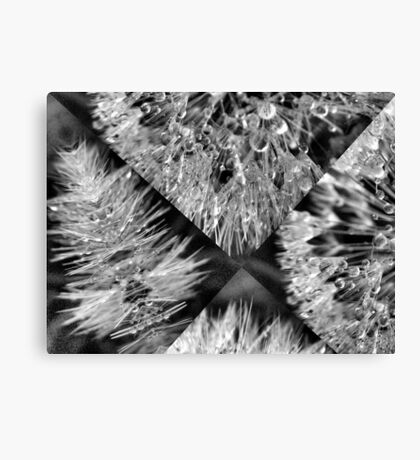 Fractured Beauty Canvas Print