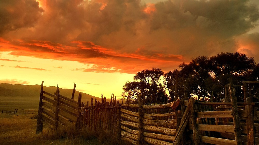 Old Cowboy Corrals by Jeanne  Nations