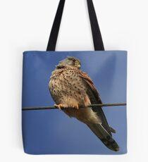 Holding The Line - Common Kestrel - None Captive Tote Bag