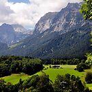 Reiter Alm (or Alp). Germany. by Daidalos