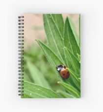 A Ladybug Sleeps Spiral Notebook