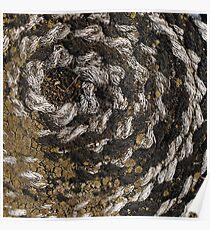 Spiral fractal (1) Poster