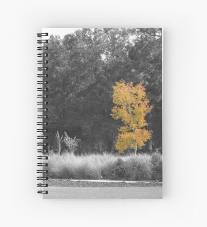 Tree at Sholom Park Spiral Notebook