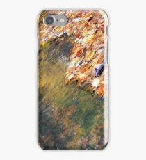 Monet's Mirror iPhone Case/Skin