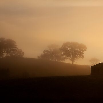 The House of the Rising Sun by JimFilmer