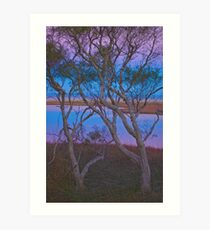 Len Howard Reserve - Mandurah Art Print