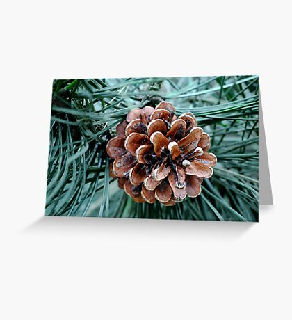 Pinecone Solo Greeting Card