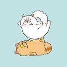Acroyoga Katzen von Huebucket