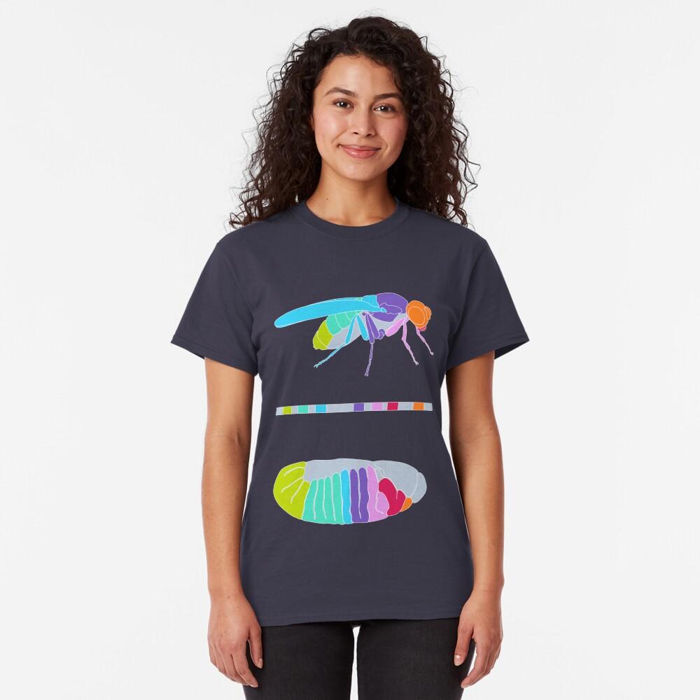Drosophila Hox Genes  Classic T-Shirt