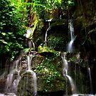 Waterfall Burgers Zoo. c by Janone