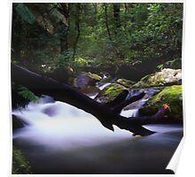 Waterfall, Marysville Poster