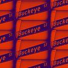 Buckeye Street, Pasadena, CA by MWP by MistahWilson