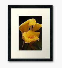 Yellow Flowers Framed Print