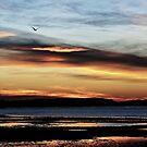 long beach sunset by Jenna Harder