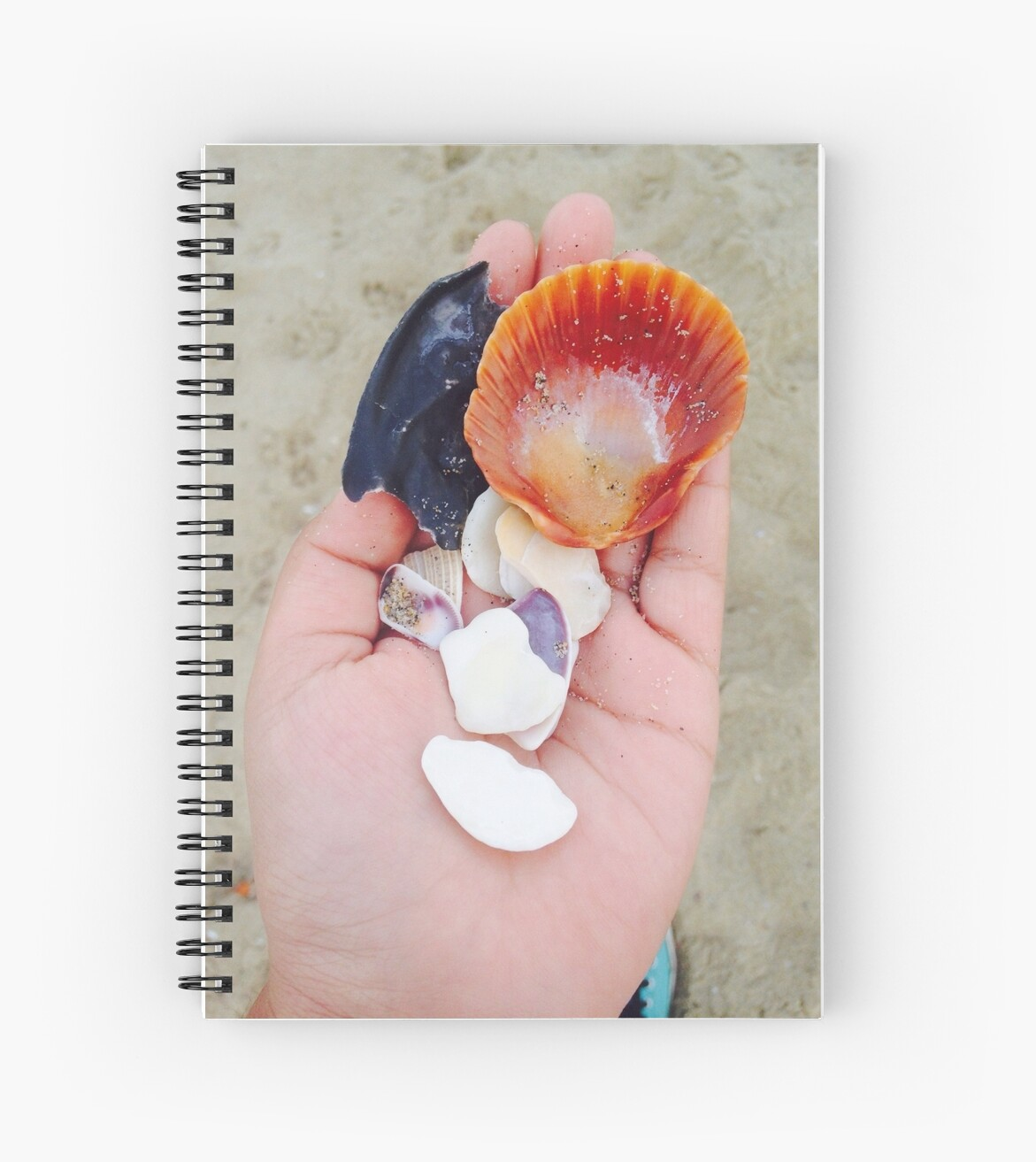 Spiral notebook with sea shells  by Afroditamata
