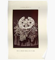 Floral Designs Series I a hand book for cut flower workers and florists John Horace McFarland 1888 0051 Broken Wheel on Ivy Base Poster