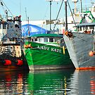 Fishing Boat by lincolngraham