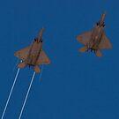 Pair of F-22 Raptors by Henry Plumley