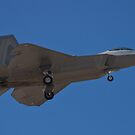 F-22 Raptor, side shot by Henry Plumley