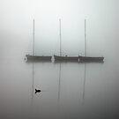Misty Morning by DAra KHaled
