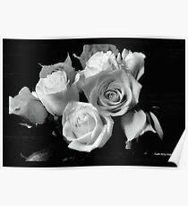 Infared Roses Poster