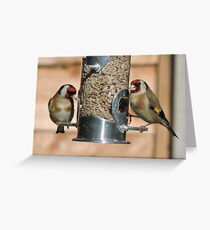 Goldfinch (British) Greeting Card