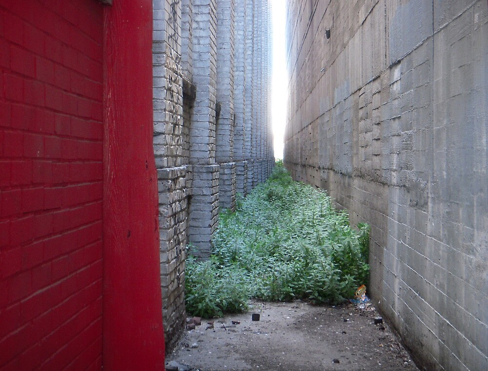 Red Wall by Tama Blough