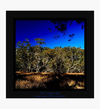 The Tamarins valley Photographic Print