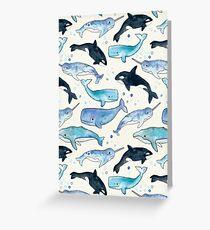 Wale, Orcas und Narwale Grußkarte