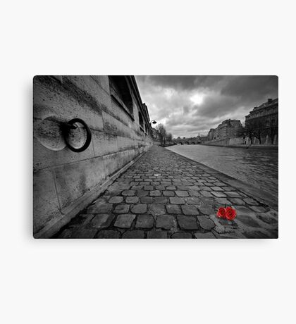 Lost roses Canvas Print