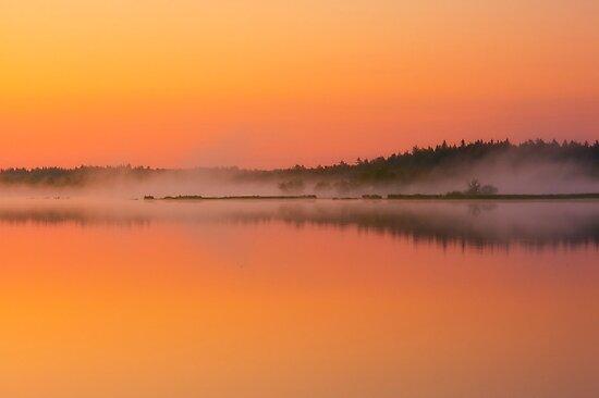Morning at 3.39 by Veikko  Suikkanen