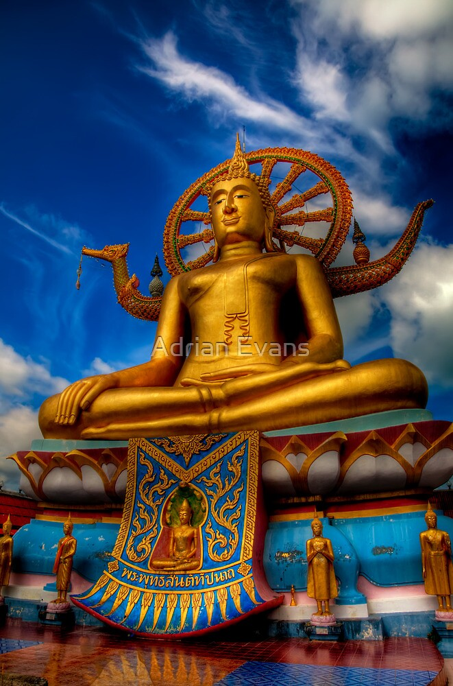 The Golden Buddha  by Adrian Evans