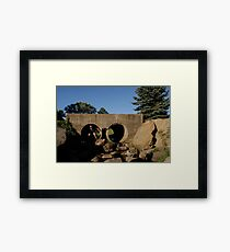 Pouyiok- 4th of July series 6 of 8 Framed Print