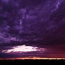 Purple Sky by Linda Sparks
