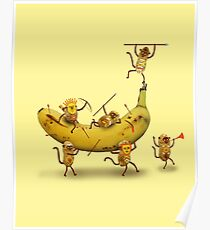 Monkeys are nuts Poster