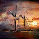 Singing sails...... by andy551