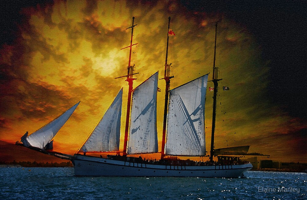 Sunset Sail  by Elaine  Manley