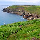 The Cliff Walk by Paul Finnegan